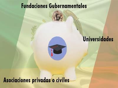 ¿Que instituciones ofrecen becas para mexicanos?